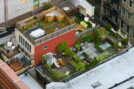 loft sur le toit avec terrasse arborée - New york