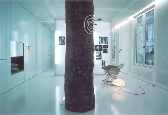 Appartement à Paris 10 réhabilité avec un arbre