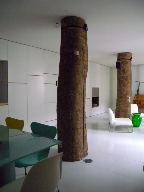 Loft avec un arbre intérieur